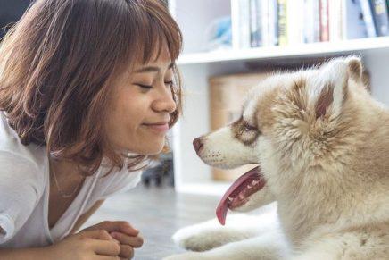 mujer perro coronavirus