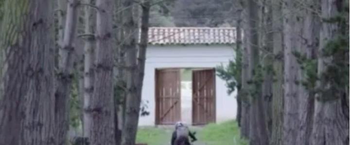 Escena de 'Venganza de Analía' que tuvo que ser falseada por 'torpeza' del actor