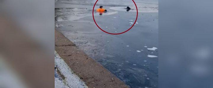 Hombre nadó en lago congelado para salvar a un perrito de ahogarse