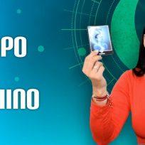 Conozca el Horóscopo Chino en Tropicana