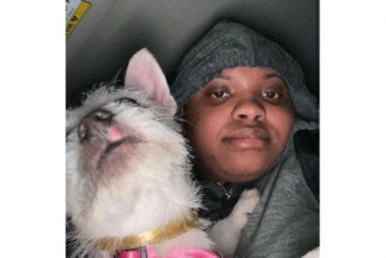 Maltrato animal Influenciadora es arrestada por maltratar a su perro para ganar popularidad