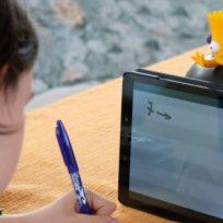 Por contestar con una grosería en plena clase virtual, niño colombiano se hace viral