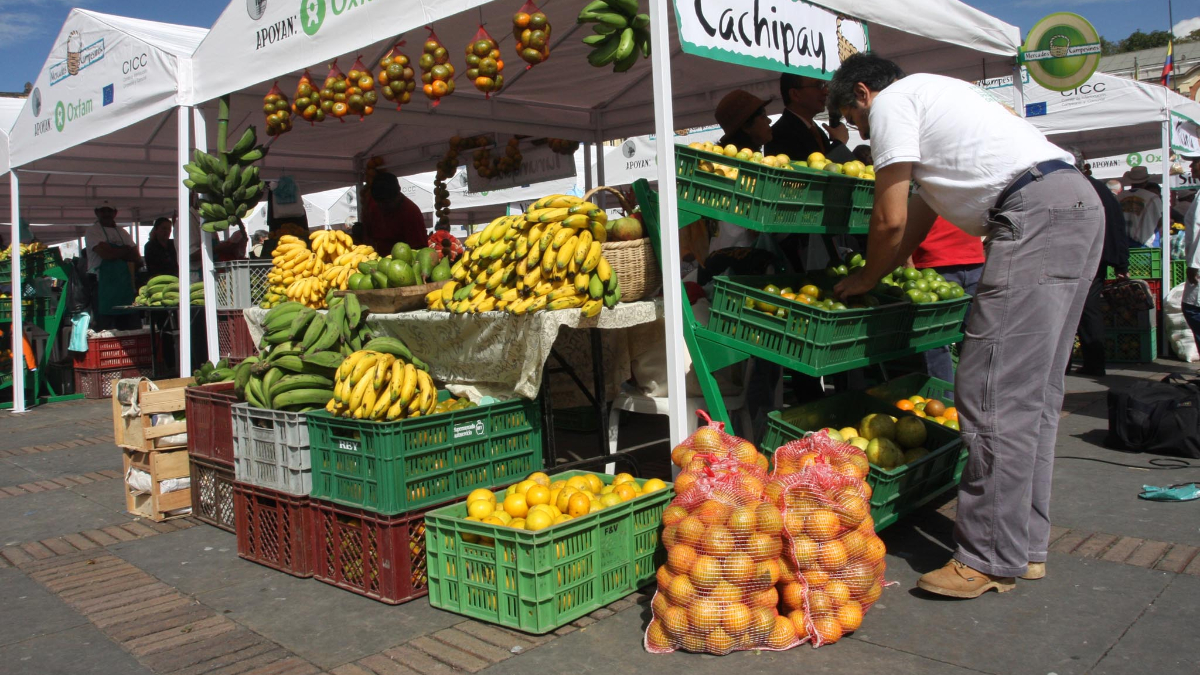 Ya puedes ordenar tu mercado campesino a domicilio en Bogotá