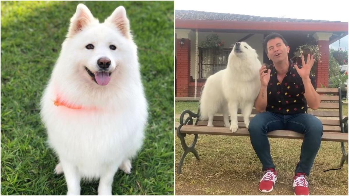 Jhonny Rivera y su perro Max _ Foto_ Instagram